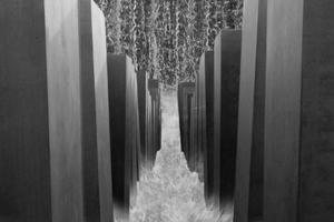 Premiazione concorso fotografico dall'acqua in poi
